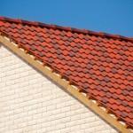 Profesionalus stogų dengimas